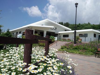 清里駅と野菊。天気がよくて静かな日でした